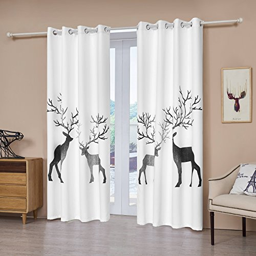 Fassbel 2 Panel Set Digital Printed Blackout Window Curtains for Bedroom Living Room Dining Room Kids Youth Room Window Drapes (W54