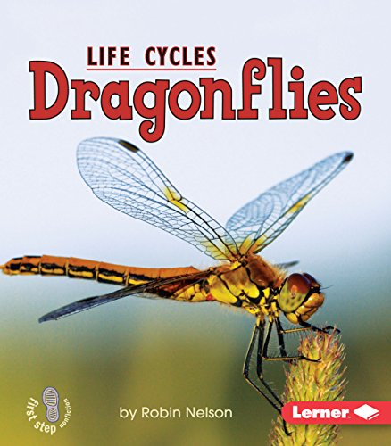 Dragonflies (First Step Nonfiction _ Animal Life Cycles) ()