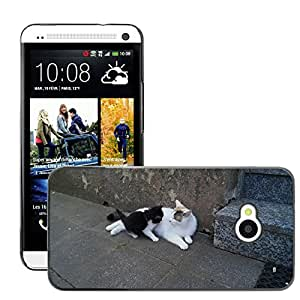 Hot Style Cell Phone PC Hard Case Cover // M00116931 Cat Young Smooch Mother Kitten // HTC One M7