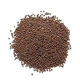 Brown Mustard Seeds (brown rai) - 100g