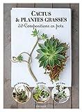 """Afficher """"Cactus et plantes grasses"""""""