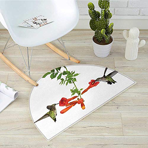 "Hummingbirds Half Round Door mats Two Hummingbirds Sipping Nectar from a Trumpet Vine Blossoms Summertime Bathroom Mat H 27.5"" xD 41.3"" Red Black Green"