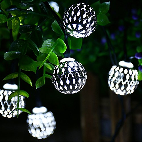 Outdoor Christmas Lights And Ornaments in Florida - 6