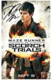 Dylan O'Brien - Maze Runner Signed Autographed A4 Photo Print Poster