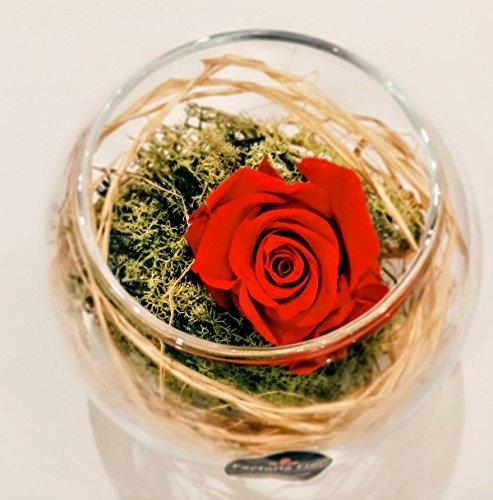 Preserved rose on crystal sphere