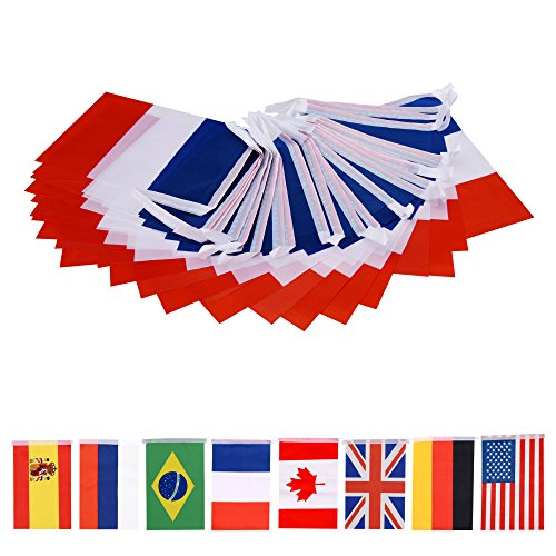 66 Feet French String Flag,60Pcs National Country World Flags Banner String