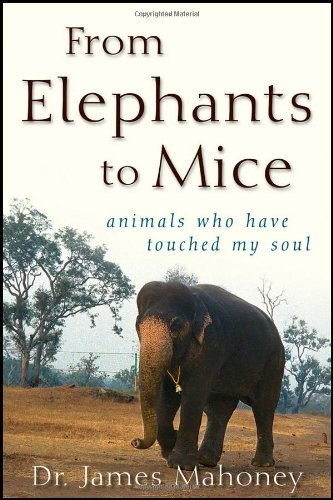 from-elephants-to-mice-animals-who-have-touched-my-soul