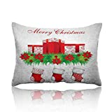 """Best Shopkins Sheet and Pillowcase Sets - homecoco Christmas Cold Pillowcase 20""""x30""""Stockings Hanging for Santa Review"""