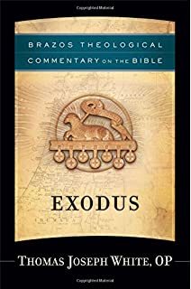 Leviticus brazos theological commentary on the bible ephraim exodus brazos theological commentary on the bible fandeluxe Choice Image