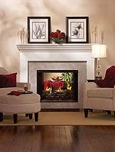 Premium 36 DV See-Through Fireplace DVP36SP32EN - Natural Gas