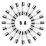 20 Pack F5AL Fast-Blow Fuse5A 250V Glass Fuses 5 x 20 mm (5amp) (F5A) by FENGWANGLI