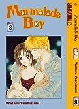 Marmalade Boy, Vol. 8