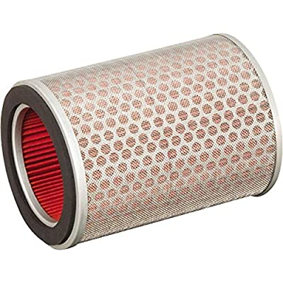 Hiflofiltro HFA1916 Premium OE Replacement Air Filter: Automotive