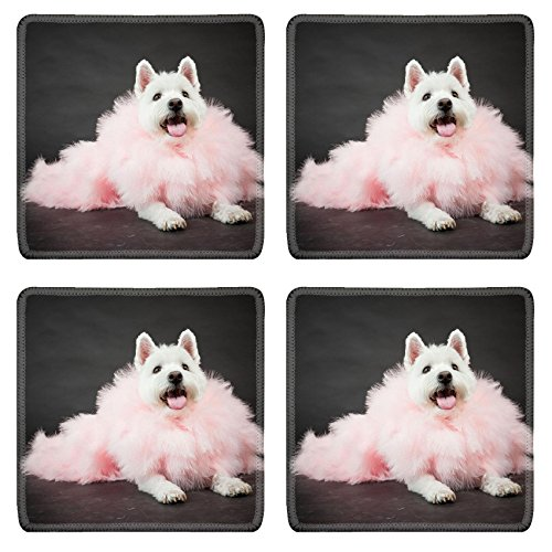 Liili Square Coasters Non-Slip Natural Rubber Desk Pads White Westhighland westie terrier with pink boa isolated on black background Photo (Best Liili Nature Boas)