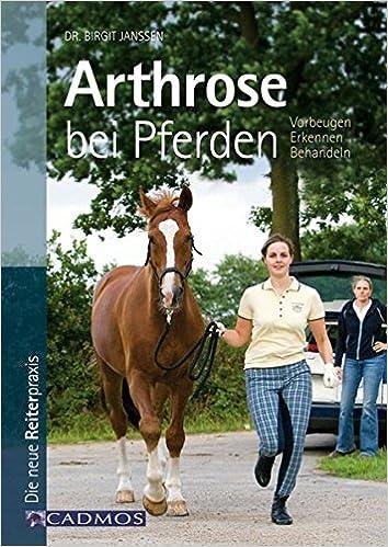 Neue, vielversprechende Therapie für Pferde mit Arthrose entdeckt