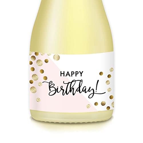 Gift Ideas Present For Womans Birthday Party 20 Count Mini Champagne Wine Bottle Decoration