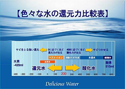 ベストイオンポット 【水道水をミネラル還元水に/浄水機能付き】 取替用カートリッジ(白) BIW2000C