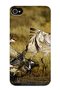 BfbhBtF2682FtWEu Chapiterq Awesome Case Cover Compatible With Iphone 4/4s - Animals Birds Nature