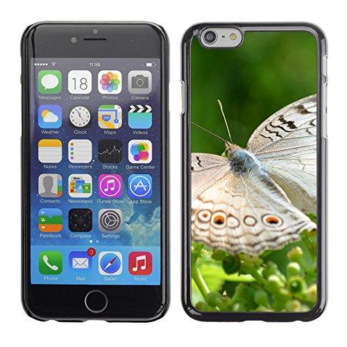 "Premio Sottile Slim Cassa Custodia Case Cover Shell // V00003053 papillon // Apple iPhone 6 6S 6G PLUS 5.5"""