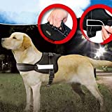 PowerLead Dog Harness No Pull Harness Dog Leash Padded Pet Walking Harness Heavy Duty for Dogs
