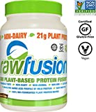 SAN Nutrition RawFusion Plant Protein Powder, Peanut Chocolate Fudge, 32.9 Ounce, Pack of 1 For Sale