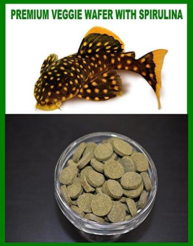 - SPIRULINA VEGGIE WAFER,***SPECIAL***Algae Wafers,Pleco,Catfish,Guppies,Mollies - 16oz Bag - 1 lb.
