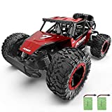 XIXOV Remote Control Car, 1:14 Aluminium Alloy Off...