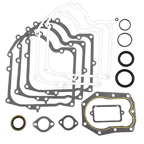 (PRO CAKEN Replacement Gasket Set Fits Briggs and Stratton 494241 & 490525)
