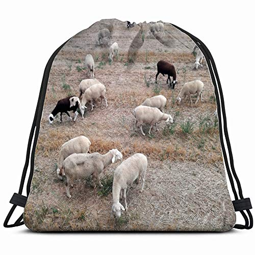 Ruminant Domestic Mammalia Ovine Cattle Breeding Industrial Agrarian Drawstring Backpack Sports Gym Bag For Women Men Children Large Size With Zipper And Water Bottle Mesh Pockets ()
