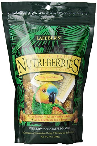 51RVuv3DtPL - LAFEBER'S Tropical Fruit Nutri-Berries for Parrots, 10-Ounce