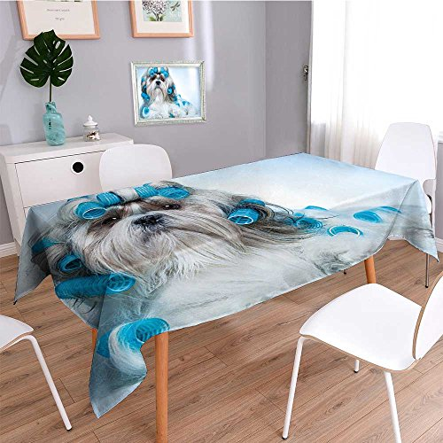 SCOCICI1588 Water Resistant Tablecloth Shih Tzu Dog with Curlers Grooming Hairstyle Salon Front View Closeup Studio Shot Blue Great for Buffet Table, Parties, Holiday Dinner, Wedding & More-W54 x -
