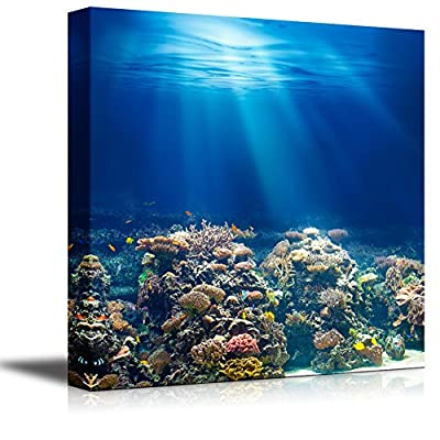 Canvas Wall Art - Coral Reef Under The Ocean/Sea | Modern Home Art Canvas Prints Gallery Wrap Giclee Printing & Ready to Hang - 12
