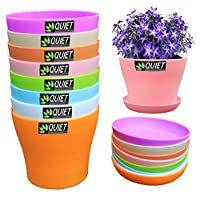 Garden Pot Saucers and Trays Product