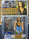WCW Bruisers Series Raven with Trash Attack Action by Toy Biz 1999