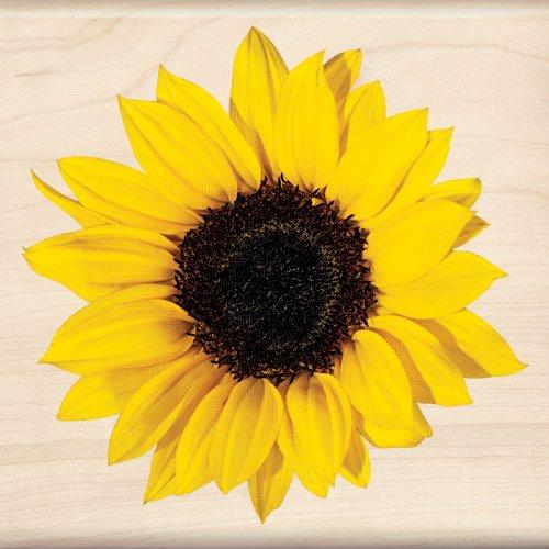 Inkadinkado Sunflower Wood Stamp