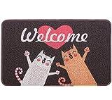 Pragovle Welcome Door mat Fanny Rugs for Outdoor and Indoor Home and Garden