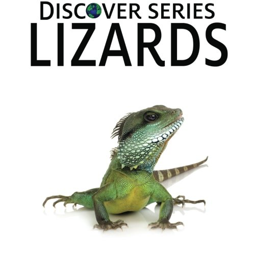 Lizards: Discover Series Picture Book for Children - Discover Series Picture Book