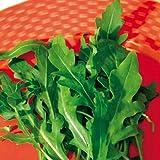 Suttons Seeds 177472 - Semi di cactus di rucola selvatica