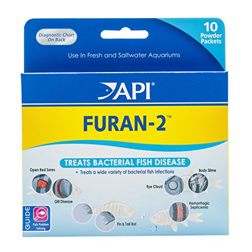 API FURAN-2 Fish Powder Medication 10-Count Box (Best Filter For Flowerhorn)