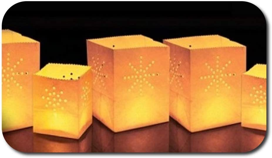 Balloominate Sky Lanterns - Mamparas de Papel para Velas (24 Unidades, tamaño pequeño): Amazon.es: Jardín