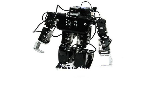 Robobuilder GOWE RQ-HUNO Robot humanoide: Amazon.es: Bricolaje y herramientas