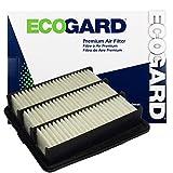 hyundai sonata 2007 air filter - ECOGARD XA5602 Premium Engine Air Filter Fits Hyundai Sonata, Azera, Entourage