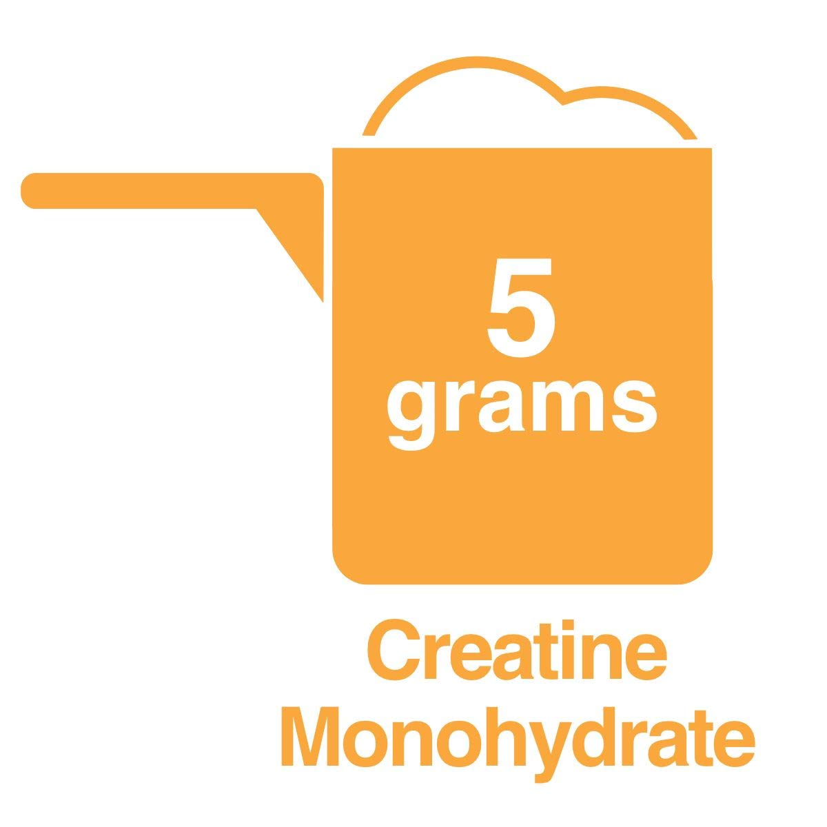 Creatine Monohydrate Micronized Powder, Ultra-Pure 100% Creatine Monohydrate, 630 Grams, 120 Servings, Pre and Post Workout, Prevents Muscle Breakdown, Preserves Muscle Mass, Helps Muscle Building