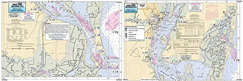 (Inshore Winyah Bay, SC - Laminated Nautical Navigation & Fishing Chart by Captain Segull's Nautical Sportfishing Charts   Chart # IWB339)