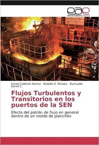 Flujos Turbulentos y Transitorios en los puertos de la SEN: Efecto del patrón de flujo en general dentro de un molde de planchón (Spanish Edition): Ismael ...