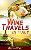 img - for Wine Travel in Italy book / textbook / text book