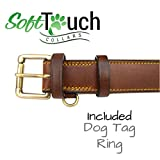 """Soft Touch Collars Padded Leather Dog Collar, Large Brown, Genuine Real Leather, 24"""" Long x 1.5 Wide, Fits Neck Size 18"""" to 21"""" Inches"""