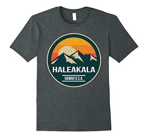 Mens Haleakala National Park Tshirt Medium Dark Heather