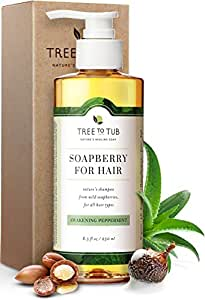 Organic Argan Shampoo For Oily Hair. The Only pH 5.5 Balanced Itchy Scalp Shampoo Gentle Enough for Sensitive Skin, Infused with Peppermint Essential Oil and Wild Soapberries, 8.5 oz—by Tree To Tub