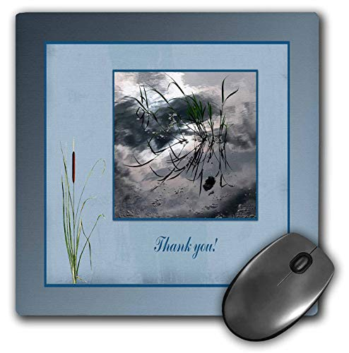 3dRose Beverly Turner Thank you Design - Thank you, Frog in a Pond Photo, Cattails Accent, Blue Frame - MousePad (mp_286999_1)